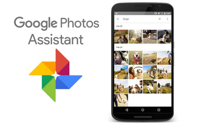7 Cool Things About Google Photos Assistant